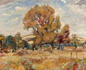 The Bevis Tree of Arundel