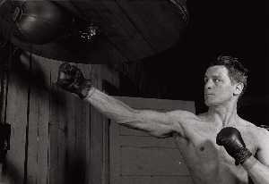 (Boxer)