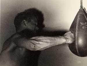 Unidentified boxer punching bag