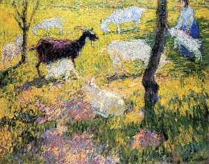 Goats in the Field
