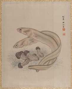 Seki Shūkō