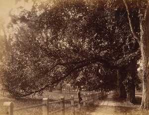 Pathway on Main Street, from the album Views of Charlestown, New Hampshire