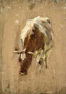 A Cow Eating