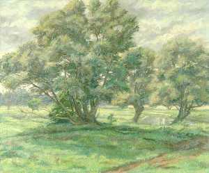Suffolk Willows