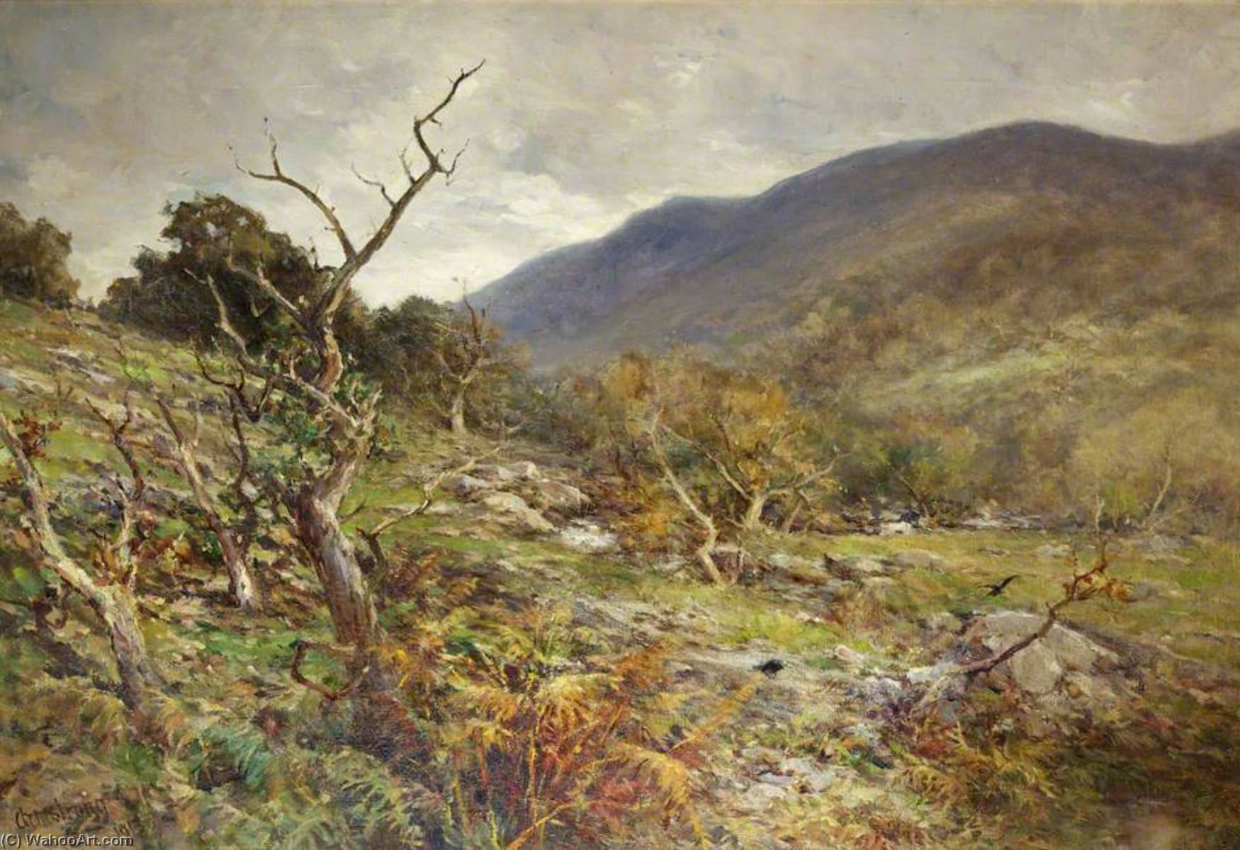 Wikioo.org - The Encyclopedia of Fine Arts - Painting, Artwork by Francis Abel William Taylor Armstrong - A Rocky Pass, North Wales