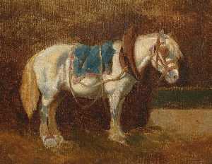 Gesattelter Schimmel, 1850
