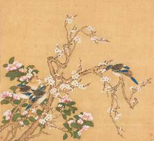 FLOWER AND BIRDS