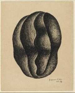 Fragment of a Nut