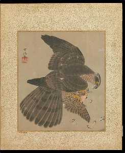 十鷹書画冊 Album of Hawks and Calligraphy