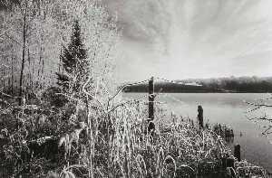 Early Winter Landscape, Wisconsin