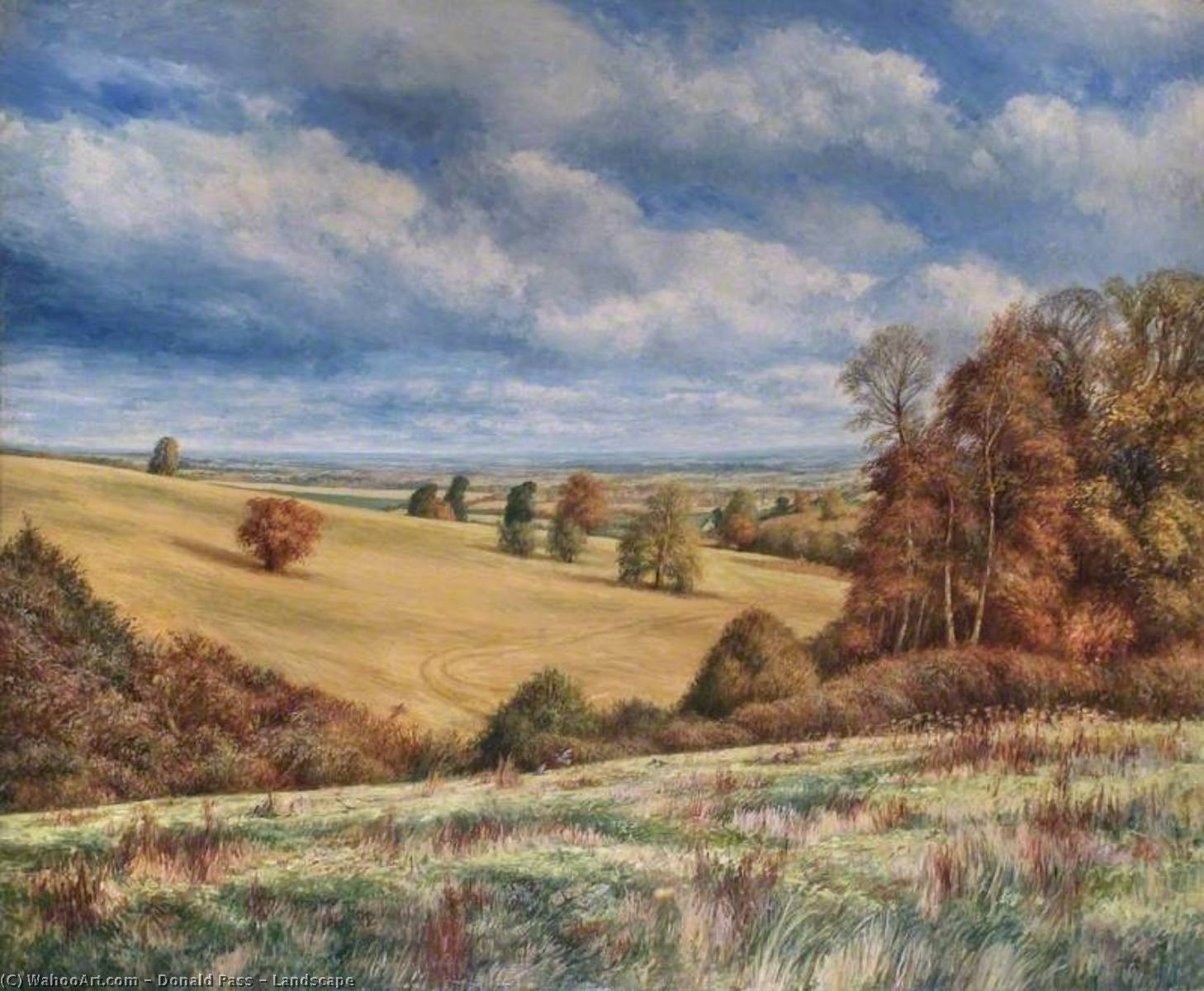 Wikioo.org - The Encyclopedia of Fine Arts - Painting, Artwork by Donald Pass - Landscape