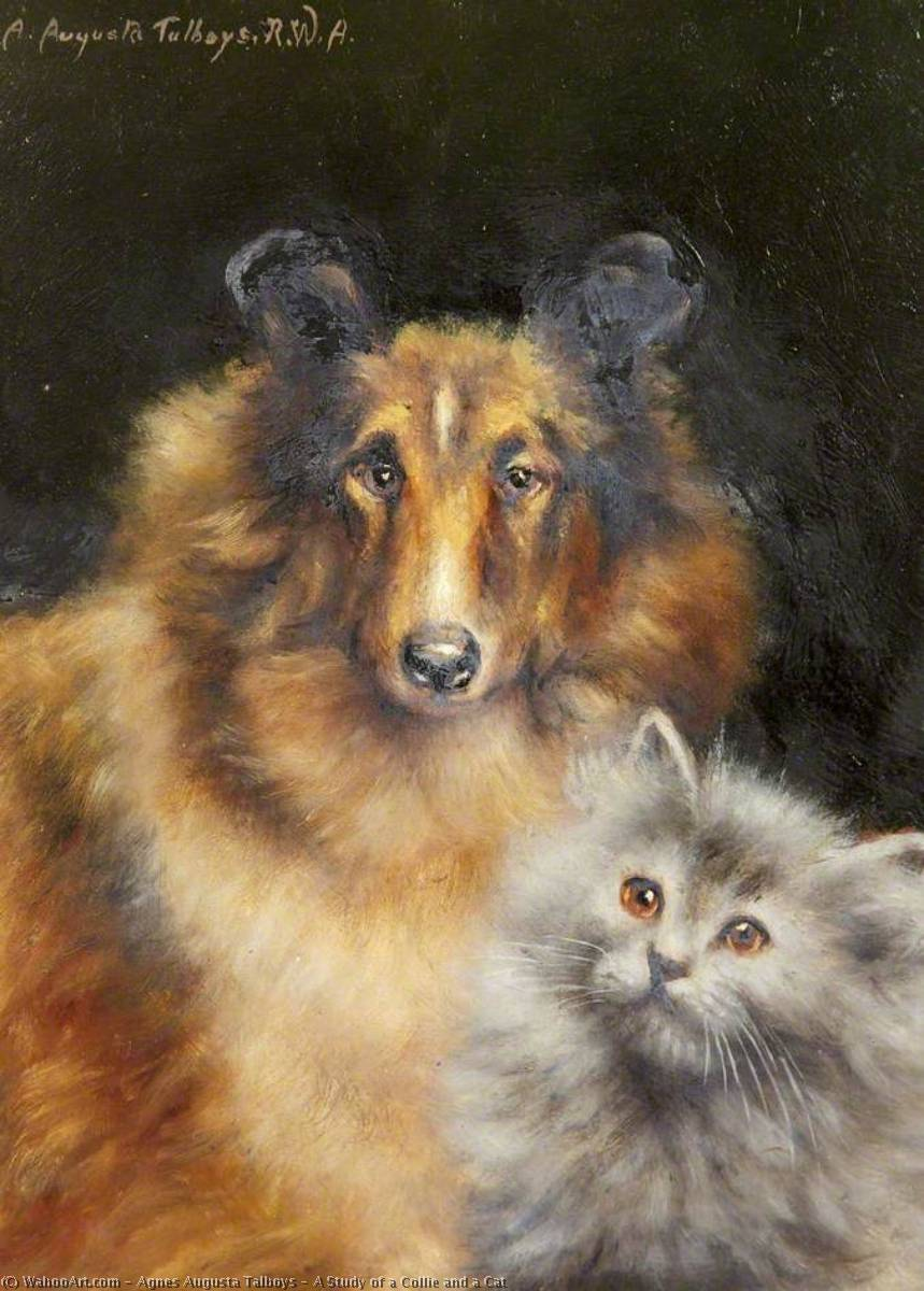 Wikioo.org - The Encyclopedia of Fine Arts - Painting, Artwork by Agnes Augusta Talboys - A Study of a Collie and a Cat