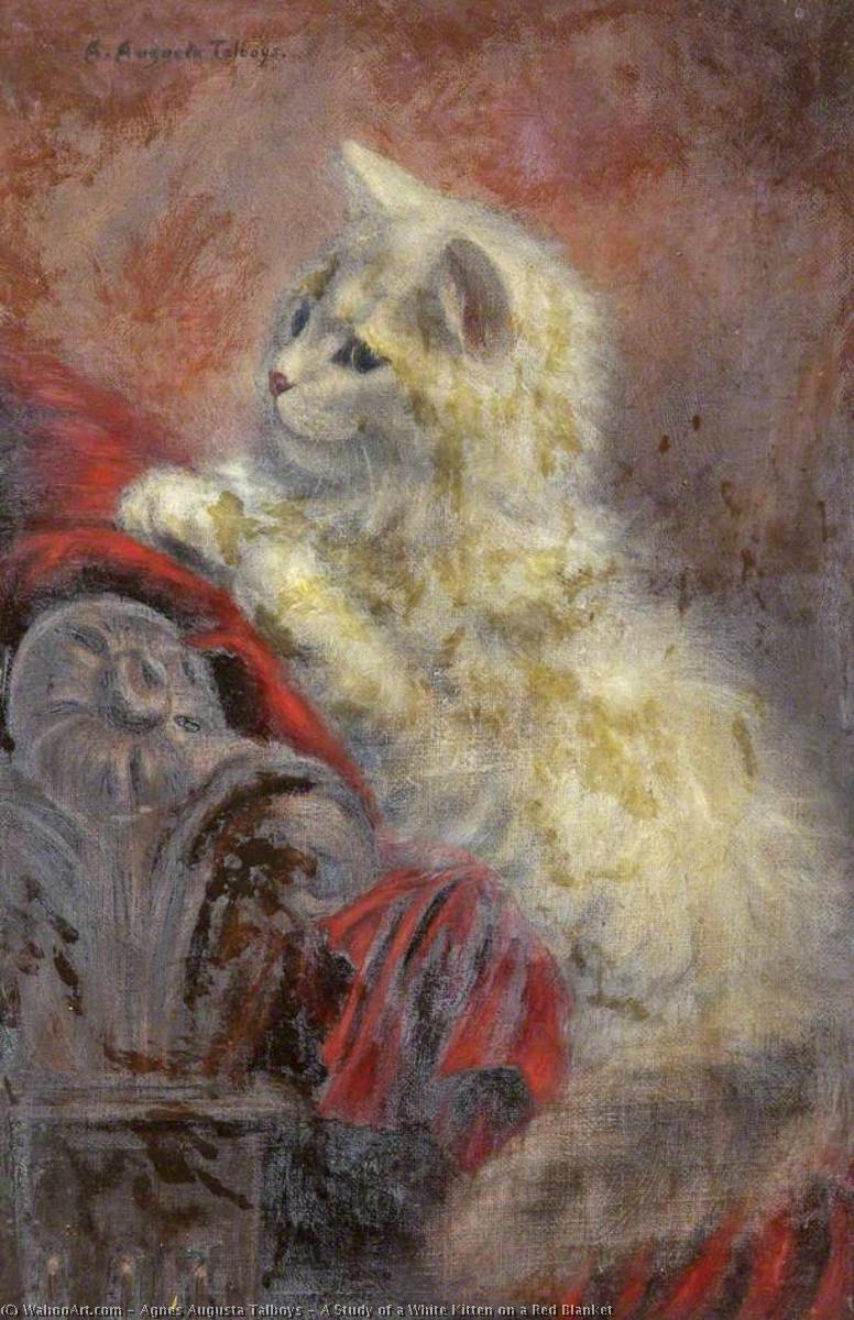 Wikioo.org - The Encyclopedia of Fine Arts - Painting, Artwork by Agnes Augusta Talboys - A Study of a White Kitten on a Red Blanket