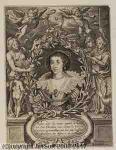 Cornelis Galle